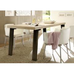 TABLE DE REPAS PALMIRA PIED METAL